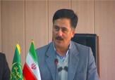 باشگاه خبرنگاران - اجرای طرح اصلاح الگوی جدید کشت در استان اردبیل