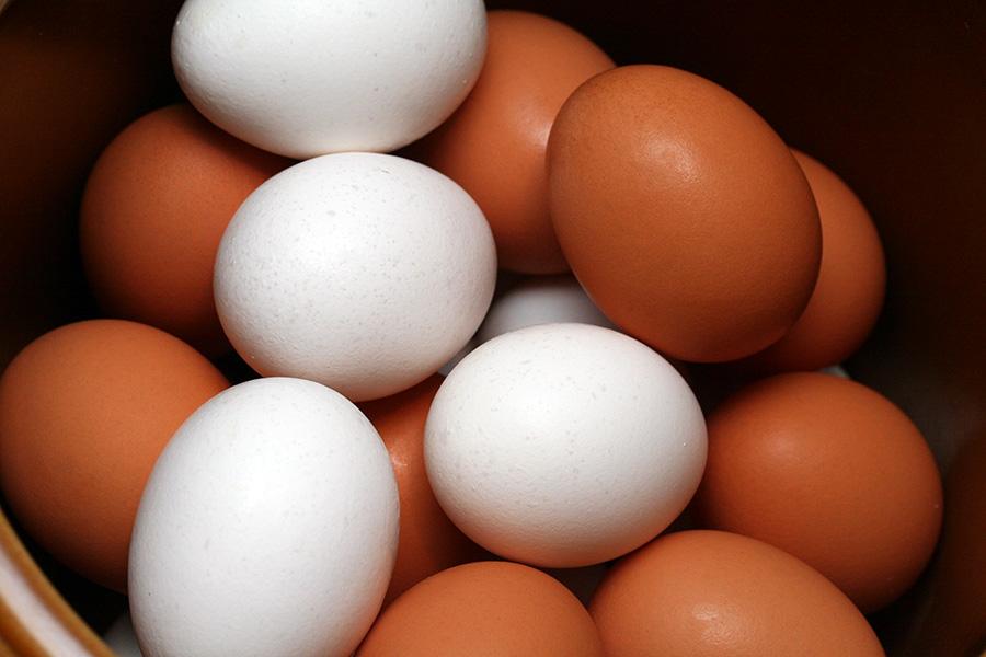 تخم مرغ های قهوه ای دردسرساز شدند