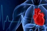 باشگاه خبرنگاران -دستاورد طرح تحول برای بیماران قلبی