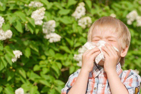خوراکیهایی که آلرژی فصلی شما را بدتر میکنند
