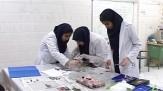 باشگاه خبرنگاران -رقابت 180 دانش آموز در مسابقات آزمایشگاهی استان