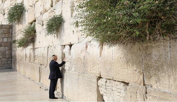اشک ایوانکا و عریضهگذاری دونالد در دیوار ندبه
