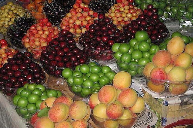 تصاویر میوه های فصل بهار