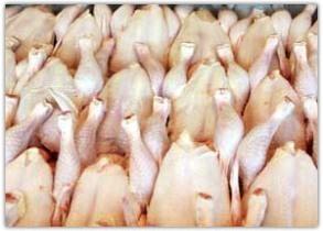 توزیع ۱۱۰۰ تن گوشت منجمد در آستانه ماه رمضان در آذربایجان شرقی