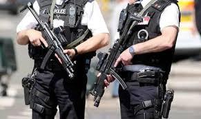 انگلیس تحت تدابیر شدید امنیتی/ بازداشت یک فرد مسلح در نزدیکی کاخ باکینگهام