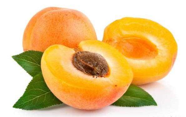 پرخاصیتترین میوه برای روزهداران/ زردآلو؛ طلای تابستان