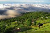 باشگاه خبرنگاران -آسمان مازندران ابری