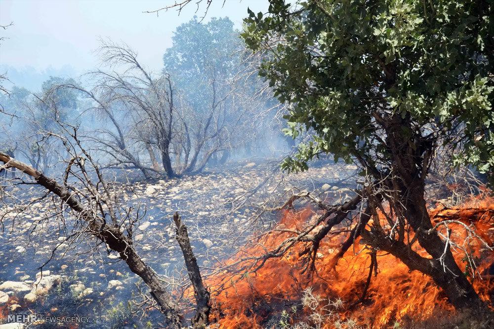 مهار آتش سوزی در جنگلهای منطقه بلوران کوهدشت