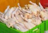 باشگاه خبرنگاران - ثبات قیمت مرغ در آستانه عید فطر