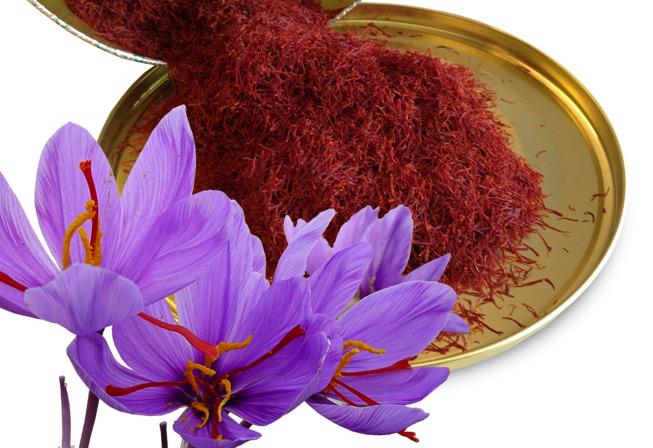 طلای سرخ ایرانی ارزان می شود/واردات زعفران با تعرفه 55 درصدی توجیه ندارد