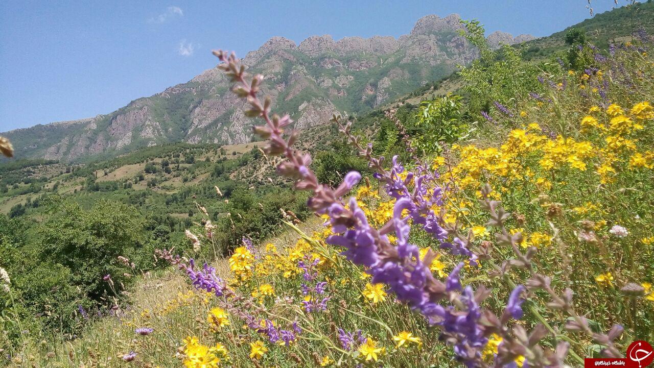 روستای «لیما» با جاذبههای گردشگری فراوان + تصاویر