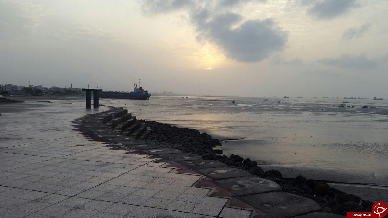 نمایی از ساحل سورو در قاب تصویر