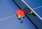 باشگاه خبرنگاران - اعزام تنیسور قزوینی به رقابت های جهانی