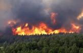 باشگاه خبرنگاران -هشدار سازمان محیط زیست درباره آتش سوزی جنگل ها در تعطیلات