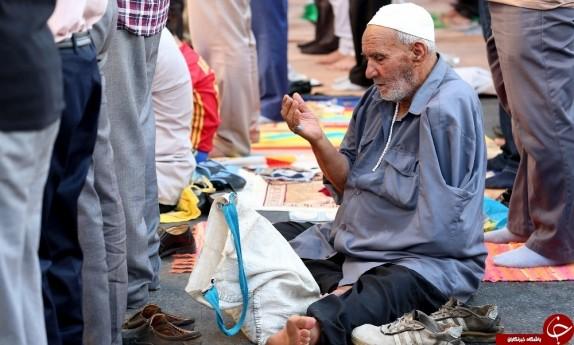باشگاه خبرنگاران - گزارش تصویری نماز عید فطر در بوشهر