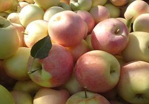از فواید جادویی سیب گلاب چه میدانید؟