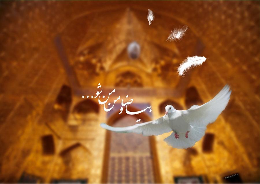 مجموعه تصاویر پروفایل به مناسبت ولادت امام رضا (ع)