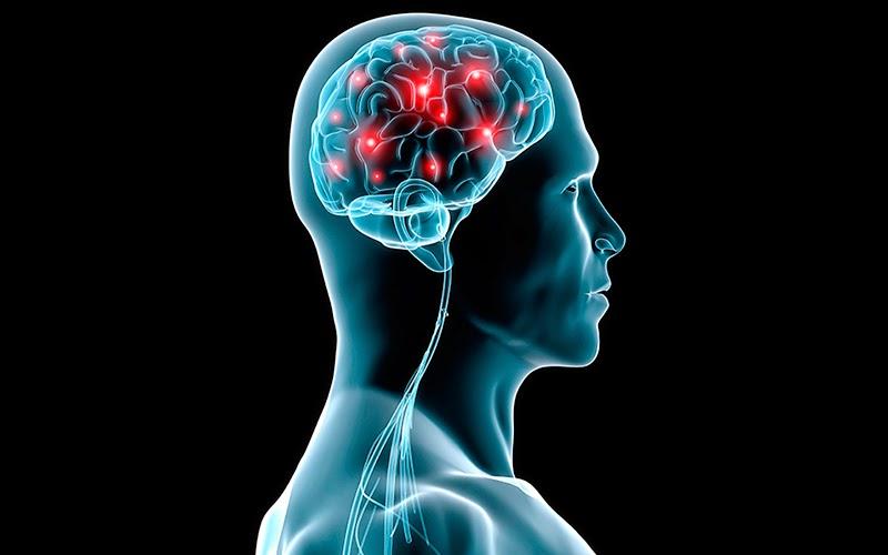 این خوراکی بدن شما را ضد سرطان می کند/اینترنت چه بلایی سرمغزتان می آورد/اعتیاد در قرص های اعصاب و روان/بیماری لثه را جدی بگیرید