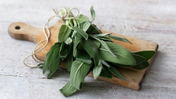 این سبزیهای پرخاصیت باعث سلامت مغزتان میشوند