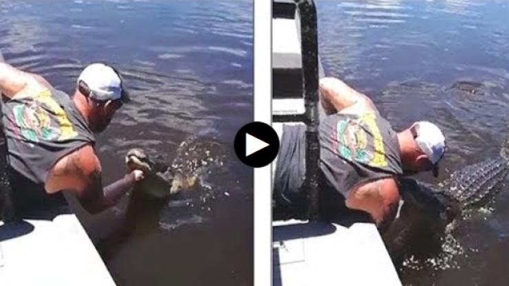 بوسه خطرناک یک گردشگر به پوزه تمساح+فیلم