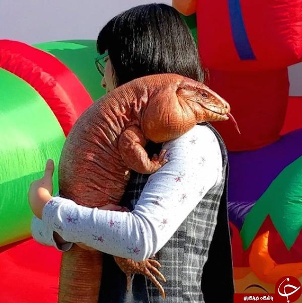 مارمولک غولپیکری که با زوج چینی زندگی میکند +تصاویر