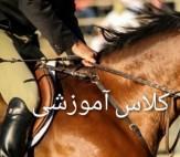 باشگاه خبرنگاران -پرورش دهندگان اسب استان در کازرون آموزش دیدند