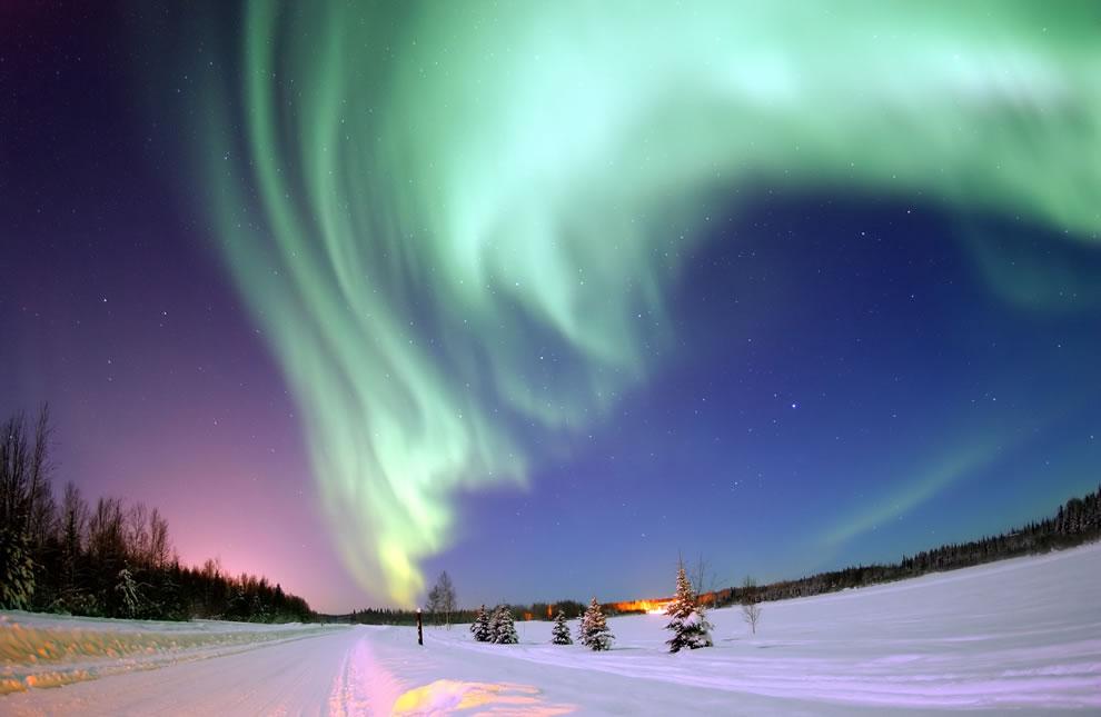 کمیاب ترین تصاویر از قطب شمال