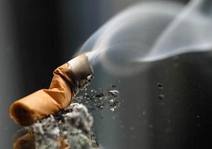 سیگاریها چقدر مالیات پرداخت کردند؟ +جدول