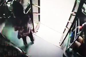 مرگ مسافر زن به دلیل پیاده شدن از اتوبوس در حال حرکت + فیلم