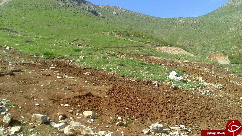 تخریب منابع طبیعی در اورامان + تصاویر