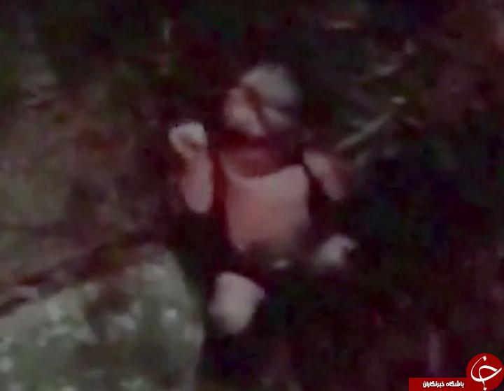 دفن نوزاد تازه متولد شده میان بوته ها توسط مادرش + فیلم