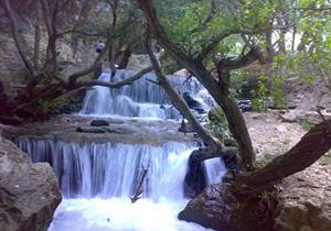 استقبال گردشگران از طبیعت زیبای یاسوج + فیلم