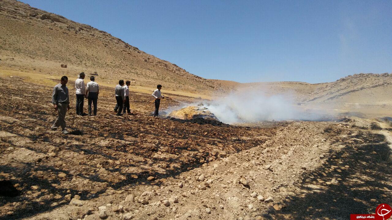 آتشسوزی مزارع گندم در «چشمه شوق» + تصاویر