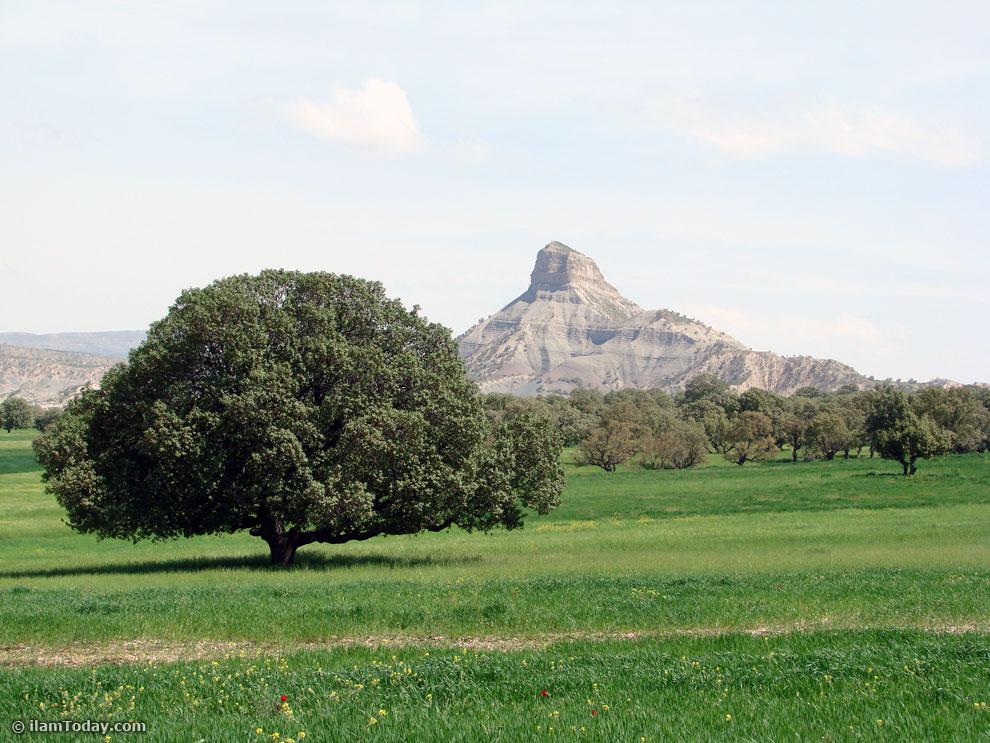 مناطق بکر و زیبای استان باید دست نخورده بماند