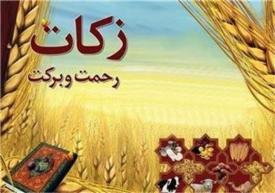 ۴۱ میلیاردریال زکات در استان زنجان جمع آوری شده است