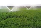 باشگاه خبرنگاران -کمک بلاعوض دولت به کشاورزان برای اجرای سیستمهای نوین آبیاری