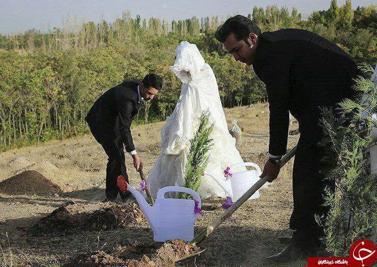 مهریه عجیب عروس و داماد ایلامی را به بیابان کشاند +عکس