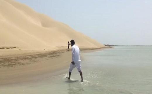 نمایی از دریا و کویر در یک قاب + فیلم