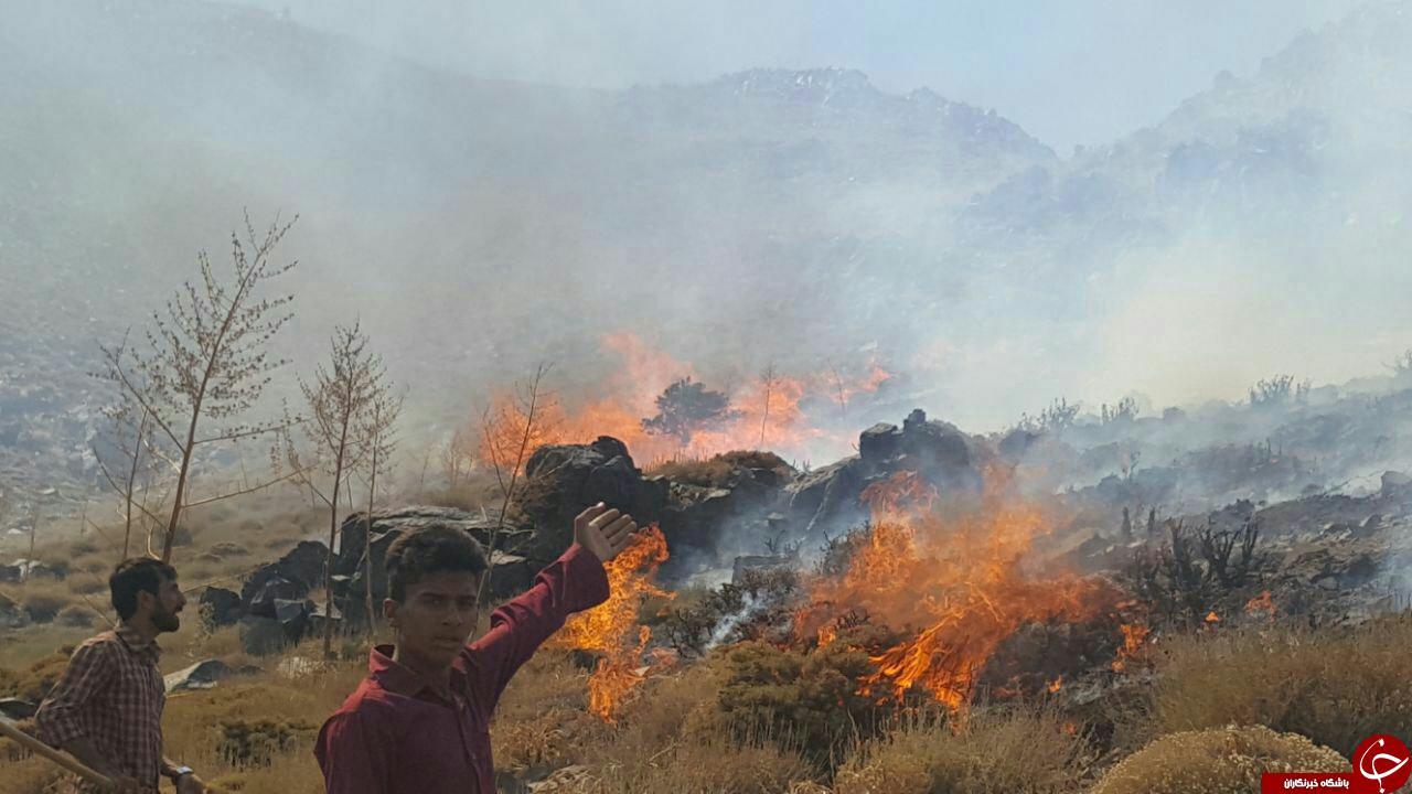 آتشسوزی مراتع روستای «گروه» + تصاویر