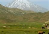 باشگاه خبرنگاران - اجرای پروژههای منابع طبیعی بوشهر با مشارکت تعاونی هایی مردمی