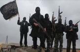 باشگاه خبرنگاران -آمار جدید فاش کرد.. داعشی ها از کجا آمده اند؟