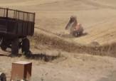 باشگاه خبرنگاران -تخلیه نخالههای ساختمانی در زمینهای کشاورزی! + فیلم