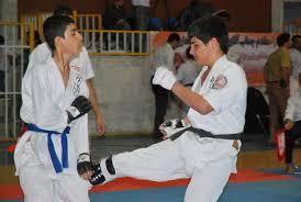 درخشش کاراته کاهای قلعه گنجی دررقابت های بین المللی
