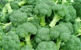 خطر ابتلا به سرطان با مصرف سبزیهای دارای برگ سبز