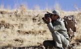 باشگاه خبرنگاران - درگیری در پارک ملی دز/۲ محیط بان مصدوم شدند
