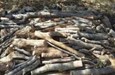 باشگاه خبرنگاران - کشف ۳ تن چوب جنگلی قاچاق در لردگان