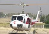 باشگاه خبرنگاران -پرنده نجات به کردستان رسید + فیلم