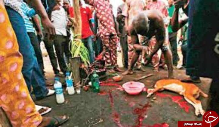 عجیب ترین مراسم مذهبی خونین در نیجریه + تصاویر