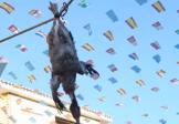 باشگاه خبرنگاران -تصاویری از یک فستیوال وحشیانه دیگر در اسپانیا