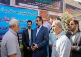 باشگاه خبرنگاران - تشریح جزئیات پرونده بنیتا 8 ماهه/ تحقیقات برای یافتن بنیتا در 8 استان انجام شد